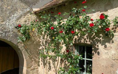 Voorjaar op La Roseraie